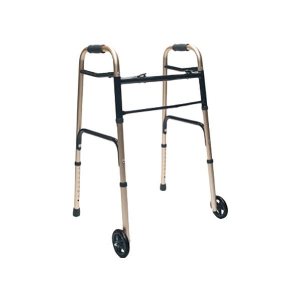 2-wheeled-walker